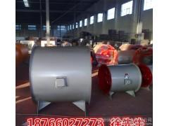 DZ轴流风机高效低噪声 高品质防腐轴流式通风机 防爆纯铜好电机