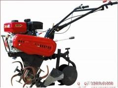 佳木斯市植树打洞机 最灵便专用机械设备888 春季育苗挖洞机