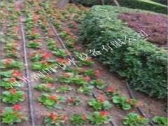 邵阳市新宁县灌溉喷药设备果树小管出流滴头 厂家批发