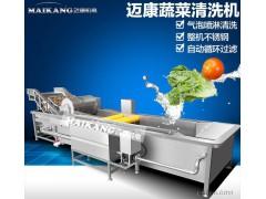 葡萄干枸杞大枣红枣清洗机  气泡冲浪式多功能蔬菜水果清洗机