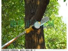 高枝锯价格报价 高枝锯厂家 园林修剪机械 园林高枝机