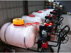 手推喷雾器 高压打药车打药机 葡萄园手推式喷药车  专业植保机械