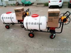 农林业植保机械  手推式汽油高压果园杀虫打药机