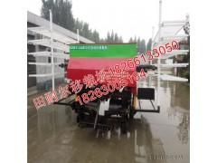 移栽机自动化移栽机自动化栽植机自动化移栽机行业领先水平山东•田耐尔