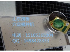 GB-021型简易式穴盘育苗播种器 漂盘播种器 穴盘点籽机