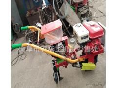 手推汽油播种机 新款小型玉米播种施肥机械