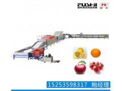 果蔬加工机械 水果清洗打蜡分选机 CE认证 质量保证