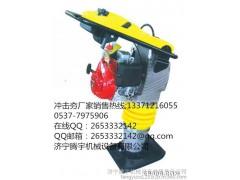 腾宇机械|TY-30A双向振动平板夯 汽油平板夯厂家直销 物美价廉直销电话13371216055