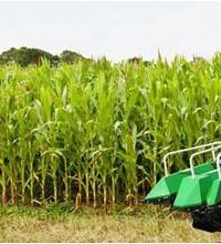 玉米收获机领域何时才能再度繁荣?